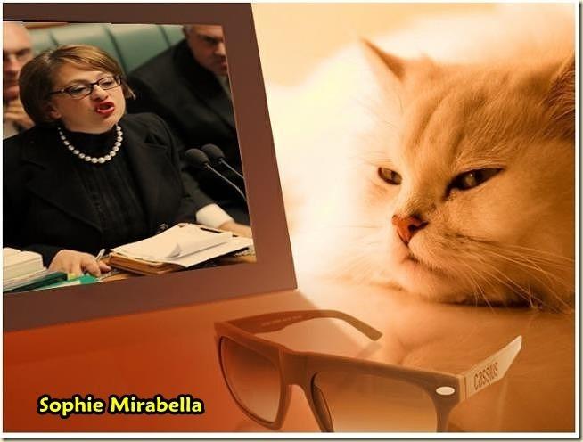 sophie-mirabella11