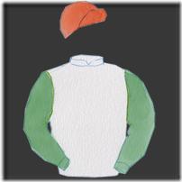 horse-thumbnail