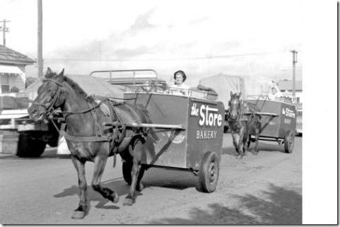 horse-cart-477x317