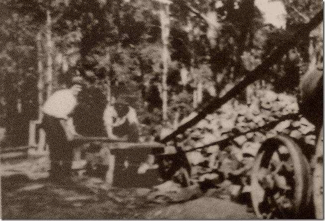 1651 W J J Whitfields saw mill in Tahmoor2