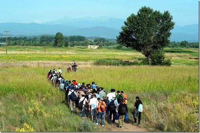 27 refugees