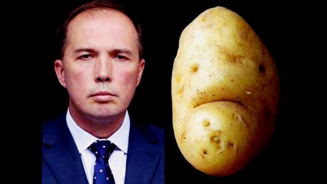 peterdutton_potato_0