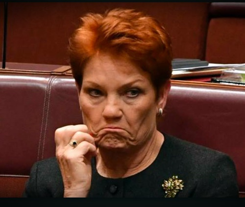 pauline-hanson-sick-tired